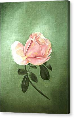 Pink Peach 1 Rose Painting Flower Painting Art Print Canvas Print by Sally Holt