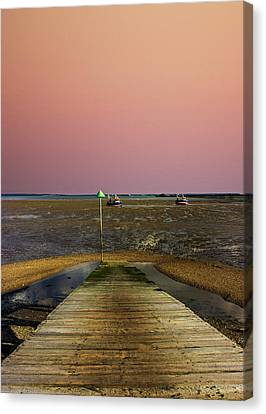 Pink Sky Canvas Print by Martin Newman
