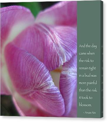 Pink Tulip With Anais Nin Quote Canvas Print by Heidi Hermes
