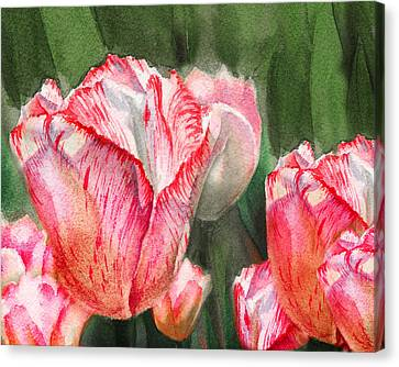 Pink Tulips By Irina Sztukowski Canvas Print by Irina Sztukowski