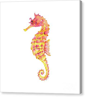 Pink Yellow Seahorse - Square Canvas Print by Amy Kirkpatrick