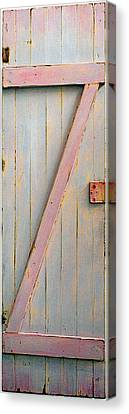 Pink Z Door Canvas Print by Asha Carolyn Young