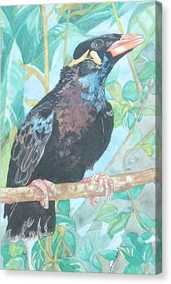 Pio  Xvi Canvas Print by Arte Ivanna