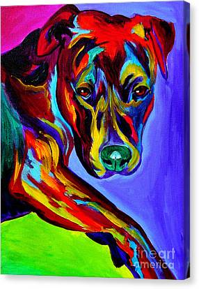 Pit Bull - Gaze Canvas Print by Alicia VanNoy Call