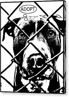 Pitbull Thinks Adopt Canvas Print by Dean Russo