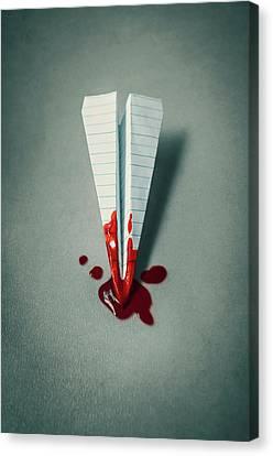 Plane Crash 1 Canvas Print by Carlos Caetano
