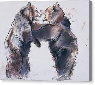 Play Fight Canvas Print by Mark Adlington