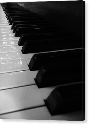 Play Me Canvas Print by Paul Wilford