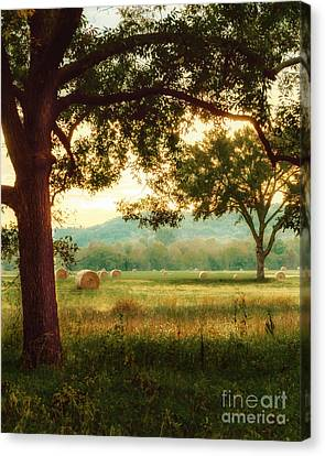 Pleasant Morning Canvas Print by Tamyra Ayles