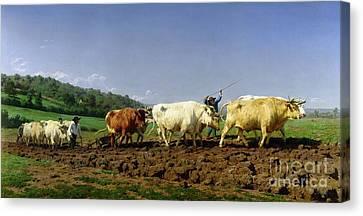 Ploughing In Nivernais Canvas Print by Rosa Bonheur
