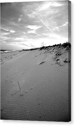 Plum Island Black And White Canvas Print by Sue OConnor