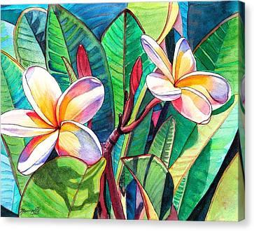Plumeria Garden Canvas Print by Marionette Taboniar