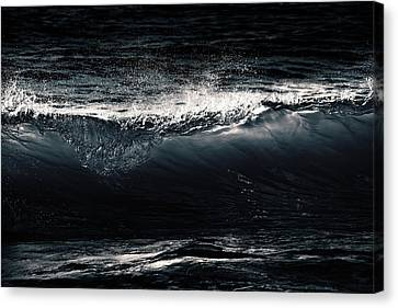 Point Break Canvas Print by Iryna Burkova