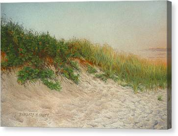 Point Judith Dunes Canvas Print by Barbara Groff