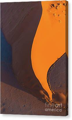 Pointed Dune Canvas Print by Inge Johnsson