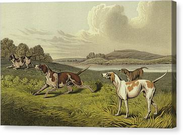 Pointers Canvas Print by Henry Thomas Alken