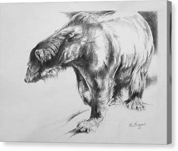 Polar Bear Canvas Print by Derrick Higgins