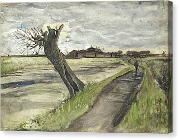 Pollard Willow, 1882 Canvas Print by Vincent Van Gogh