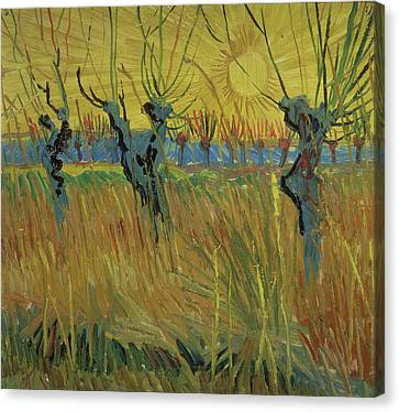 Pollarded Willows And Setting Sun Canvas Print by Vincent Van Gogh