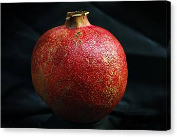 Pomegranate Canvas Print by Terence Davis