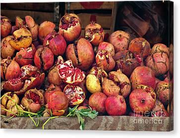 Pomegranates Canvas Print by Marion Galt