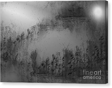 Pond By Moonlight Canvas Print by John Krakora