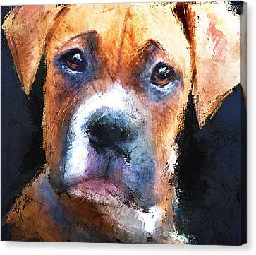 Pooch Canvas Print by Robert Smith