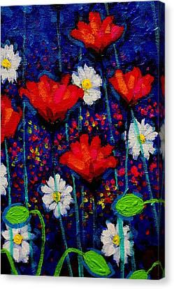 Poppy Cluster II Canvas Print by John  Nolan