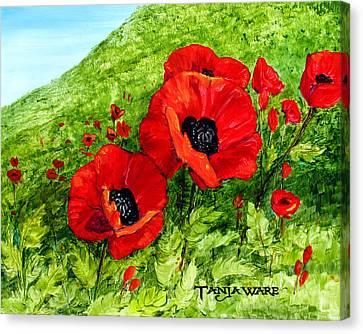 Poppy Field Canvas Print by Tanja Ware