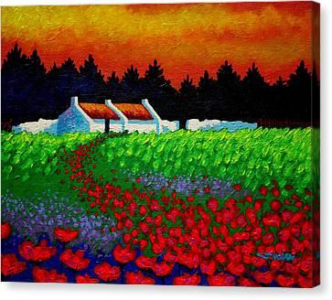 Poppy Path Canvas Print by John  Nolan