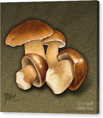 Porcini Mushrooms Canvas Print by Marshall Robinson