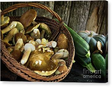 Porcini Mushrooms, Zucchini And A Pumpkin Canvas Print by IPics Photography