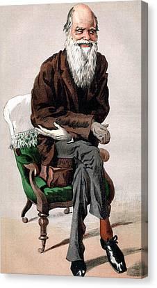 Portrait Of Charles Darwin Canvas Print by James Jacques Joseph Tissot