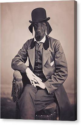 Posing German Pointer Canvas Print by Aged Pixel