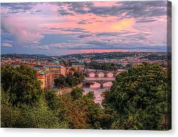 Prague In Pink Canvas Print by Nico Trinkhaus