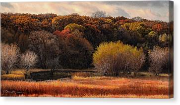 Prairie Autumn Stream Canvas Print by Bruce Morrison