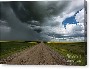 Prairie Summer Road Canvas Print by Ian McGregor