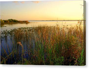 Pretty Evening At The Lake Canvas Print by Susanne Van Hulst