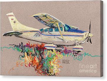 Private Plane Canvas Print by Donald Maier