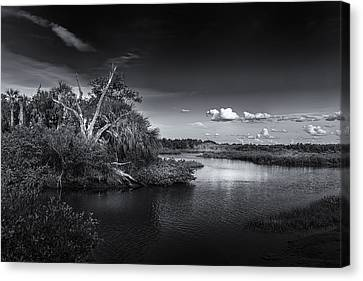 Protected Wetland Canvas Print by Marvin Spates