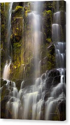 Proxy Falls Vertical Textures Canvas Print by Leland D Howard