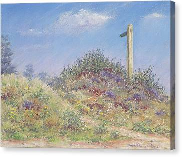Public Footpath Canvas Print by Anthony Rule