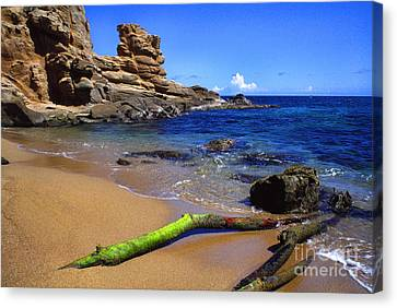 Puerto Rico Toro Point Canvas Print by Thomas R Fletcher