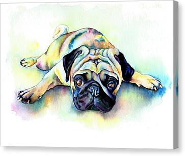 Pug Laying Flat Canvas Print by Christy  Freeman