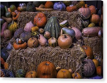 Pumpkins And Hay Blaes Canvas Print by Garry Gay