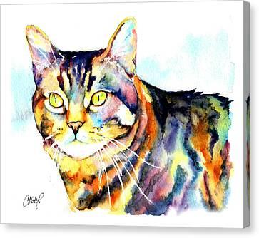Punky Kitty  Canvas Print by Christy  Freeman