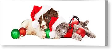 Puppy And Kitten Laying With Christmas Ornaments Canvas Print by Susan Schmitz