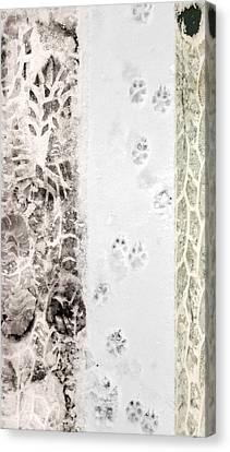 Puppy Prints In The Snow Canvas Print by Lynn Hansen