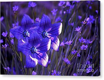 Purple Florwer Abstract Canvas Print by Marjorie Imbeau