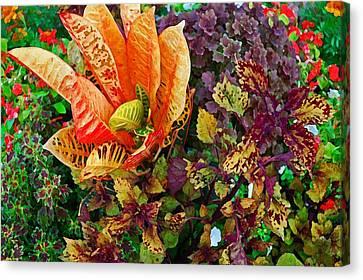 Purple Flowers Canvas Print by Michael Thomas